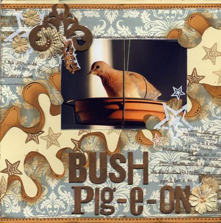 Bushpigeon